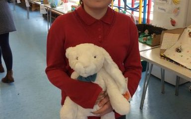 Name the Bunny – and the bear!