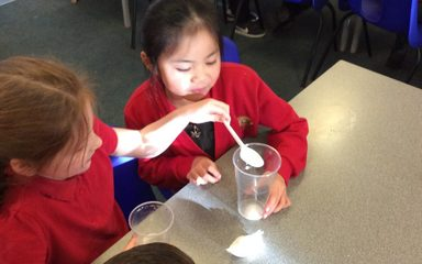 Year 2 Science Workshop- Christmas Theme