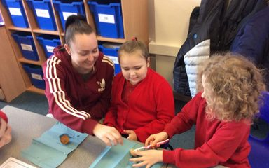Year 4 – Science