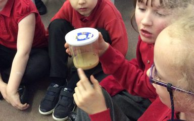 A special delivery in Year 2